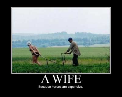 wife horses expensive