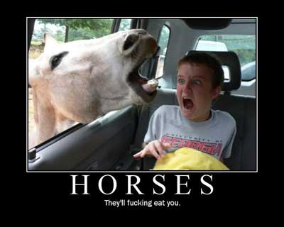 horses will eat you