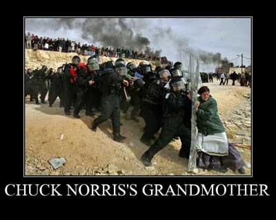 chuck norris grandma