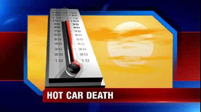 baby hot car