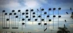 birds on a wire song