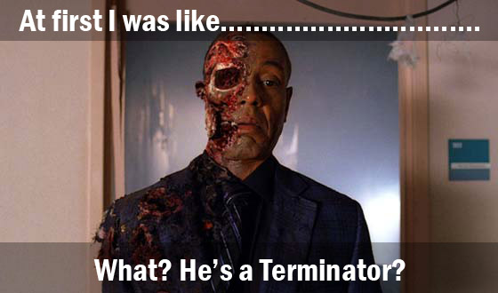 breaking gustavo bad terminator