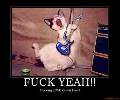 guitar hero cat