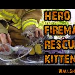 hero fireman saves kitten go pro
