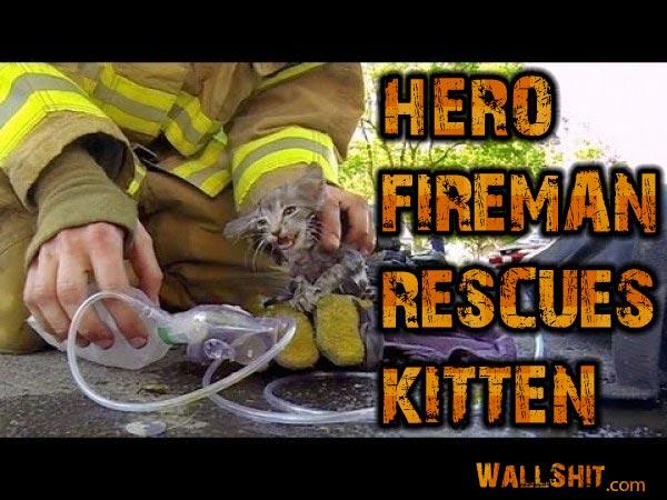 hero fireman saves kitten go pro