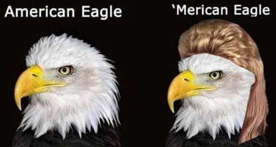Merican Eagle