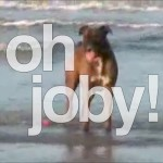 Joby At The Beach