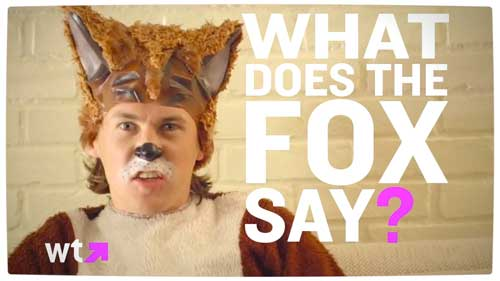 what does the fox say video